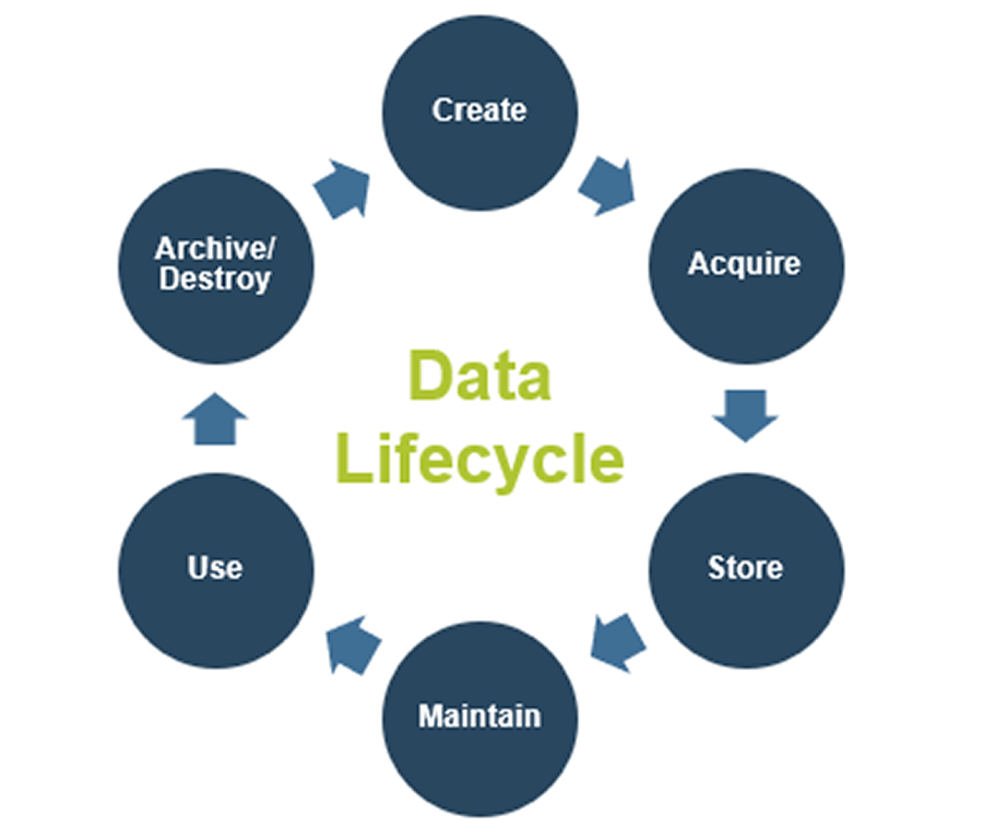 A screenshot of the Data Lifecycle.