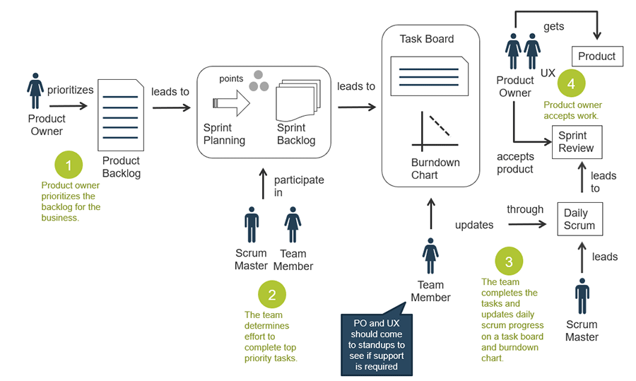 A model is displayed to demonstrate the 4 steps in the scrum process