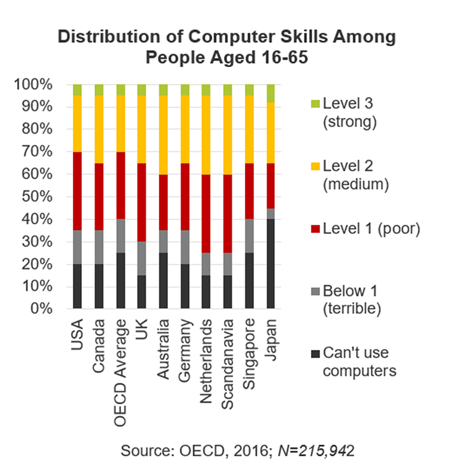 Image is of a graph showing the ability of computer skills from age 16-65 among various countries.