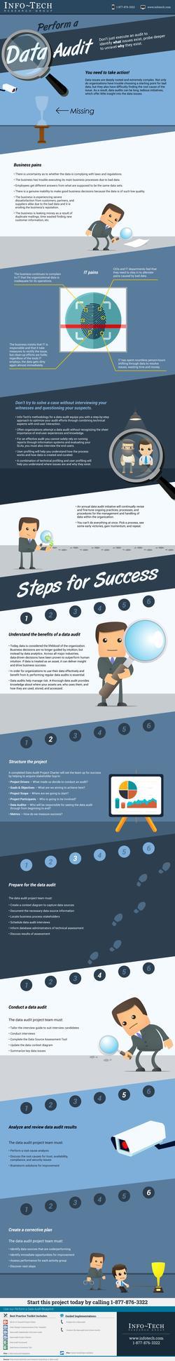 Perform a Data Audit thumbnail