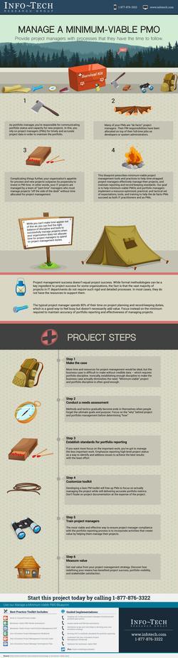 IT Project Management Lite thumbnail