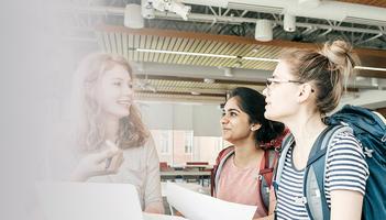 Develop an Internship Program icon / link